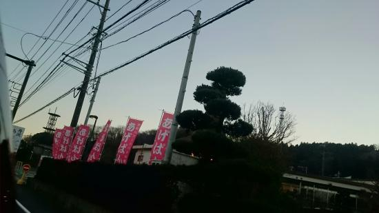 Ogino Pan Factory Direct Sale: DSC_1257_large.jpg