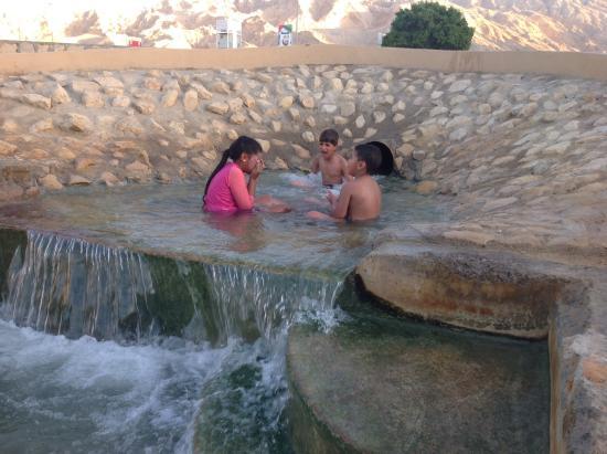 Swimming Picture Of Green Mubazzarah Chalets Al Ain Tripadvisor