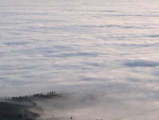 Bosco, Włochy: photo1.jpg