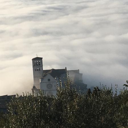 Bosco, Włochy: photo3.jpg