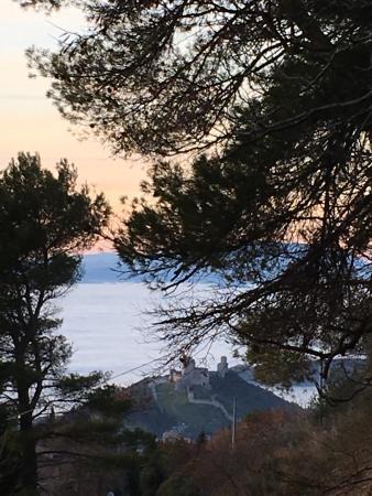 Bosco, Włochy: photo4.jpg