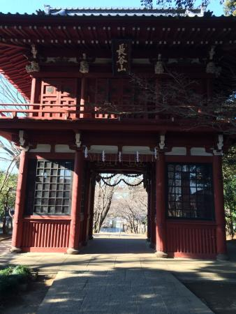 Hondo-ji Temple: photo0.jpg