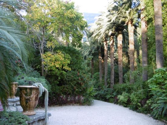 Plante grasse picture of jardin botanique et exotique for Jardin botanique 78