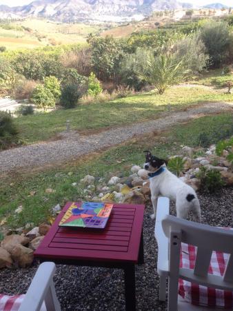 Pizarra, Hiszpania: Just checking the vista