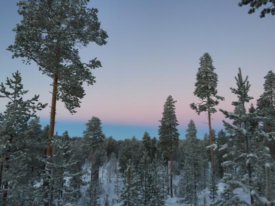 Zdjęcie Nellim Wilderness Hotel