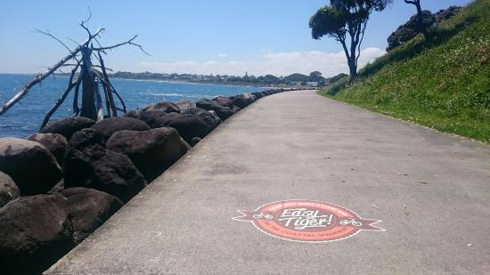New Plymouth, Nieuw-Zeeland: DSC_0271_large.jpg