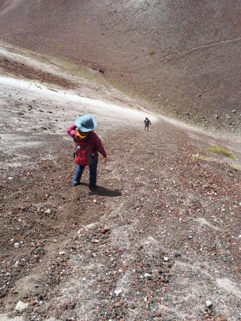 Mt. Tarawera: down the crater