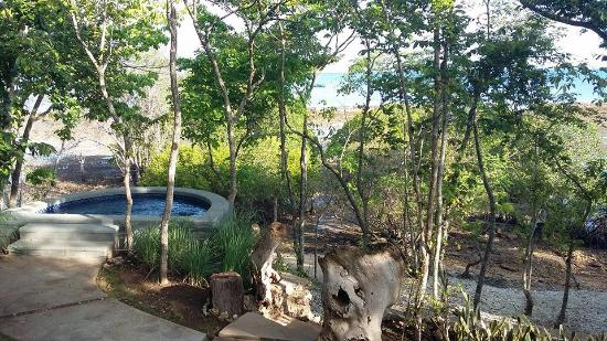 West Bali National Park, Indonesien: the plunge pool n view from the villa
