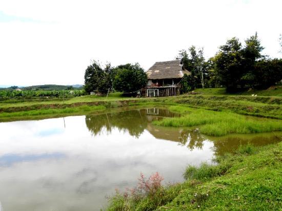 Muang Sing, Laos: Adila Guesthouse - vue sur l'étang