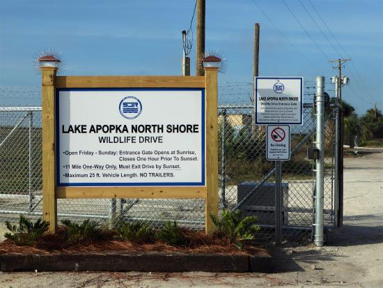 ‪Lake Apopka Wildlife Trail‬