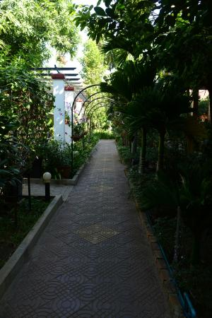 ‪‪Central Boutique Angkor Hotel‬: path in gardens‬