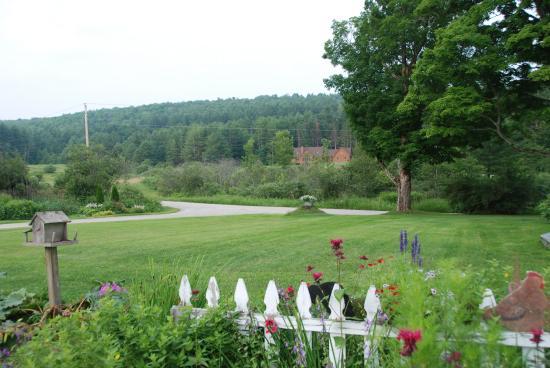 Combes Family Inn: Ruth's gardens in summer months.