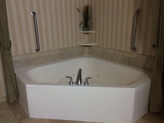 Whirlpool Picture Of Hampton Inn Suites Albany Downtown Albany Tripadvisor