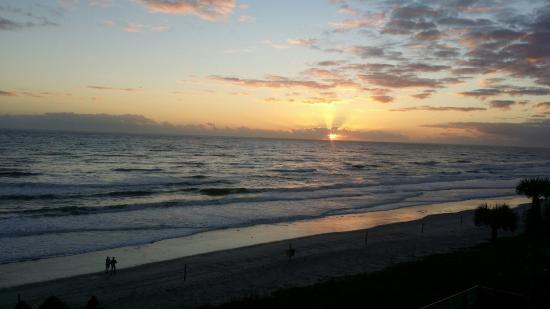 Royal Floridian South Ormond Beach Reviews