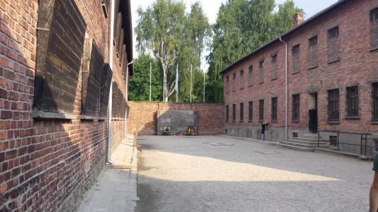 Jewish museum and synagogue auschwitz death wall auschwitz i