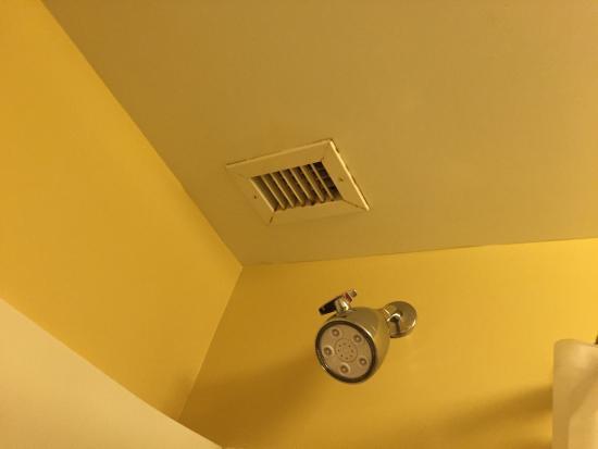 TownePlace Suites Cincinnati Northeast: photo1.jpg