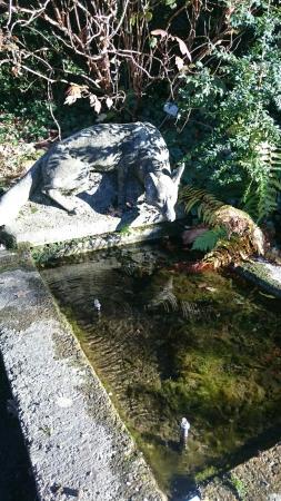 Botanical Garden (Botanischer Garten)