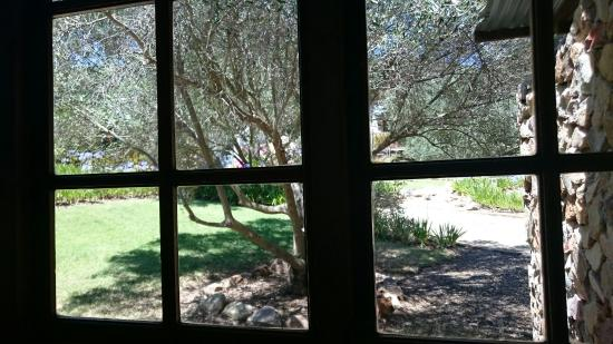Olive Garden Country Lodge: DSC_1097_large.jpg