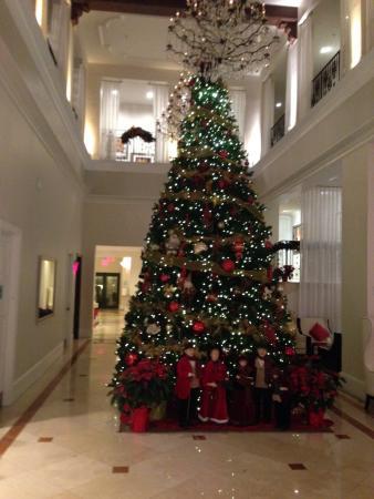 Inn on Fifth: Beautiful Xmas tree in lobby of hotel.