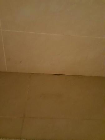 Miramar Al Aqah Beach Resort: image-2a48a49dd5a06286fb9cac530266076d649b8530d5d03ba76e7d9d1864a3546f-V_large.jpg
