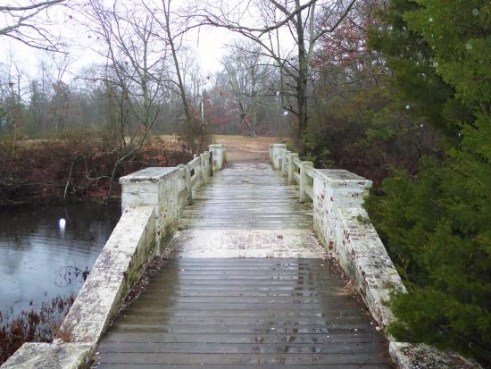 Superior Parvin State Park: White Bridge