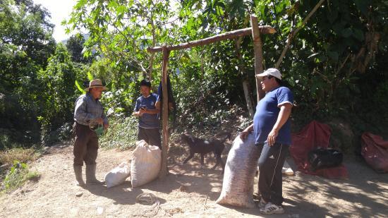Cooperativa La Voz Que Clama En El Desierto: La Voz cooperative