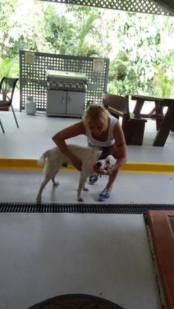 Landsborough, Australia: Motel Hund Jackie