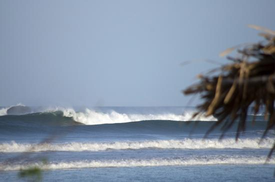 Nosara Beach Playa Guiones Costa Rica