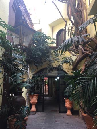 La Casa De Las Conservas Gold