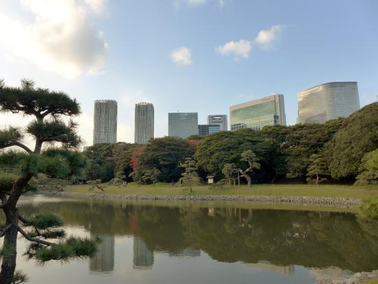 Taman Hama Rikyu: 汐入の池