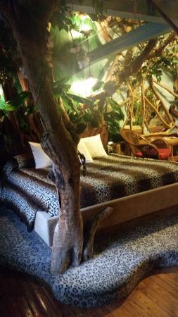 Feather Nest Inn: bed