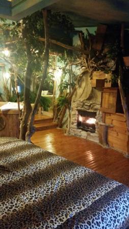 Feather Nest Inn: fireplace