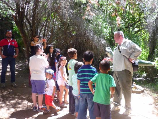Parque Nahuelito照片