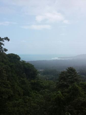 薩瑪撒提熱帶雨林保護區渡假屋照片