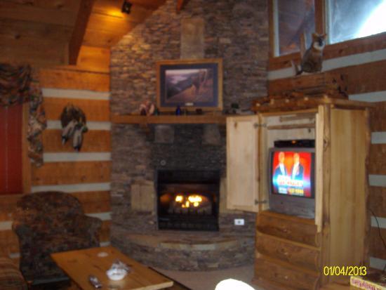 Timberwinds Log Cabins: gas fireplace