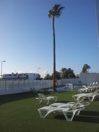 Jard n hamaca piscina picture of placida de mar playa for Piscina playa del ingles