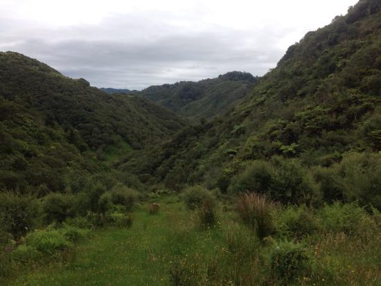 Owhango, Neuseeland: photo1.jpg