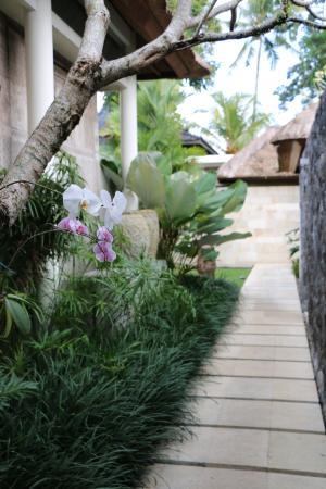 The Purist Villas and Spa: Garden Walkways