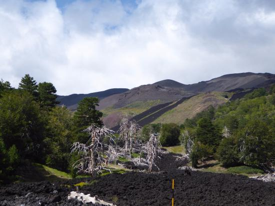 Geo Etna Explorer - Etna Excursions: Two lava flows clear to see - like a runway