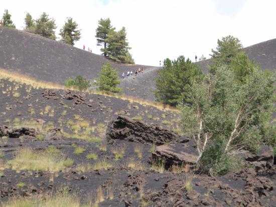 Geo Etna Explorer - Etna Excursions: A recent lava flow went across one of the roads