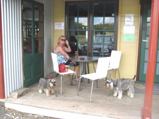 Laidley, Australia: Counter lunch at the Hotel with the furkids. Walking distance from the camp area.