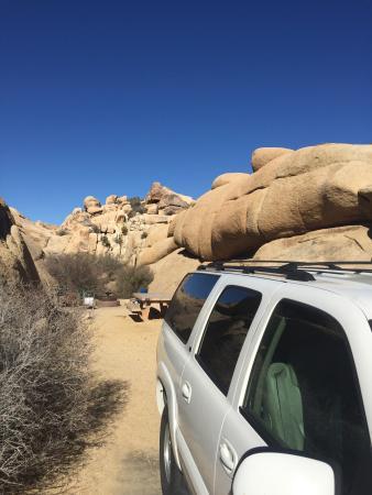 Jumbo Rocks Campground: photo0.jpg