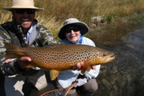 Melrose, MT: Big Hole River brown trout