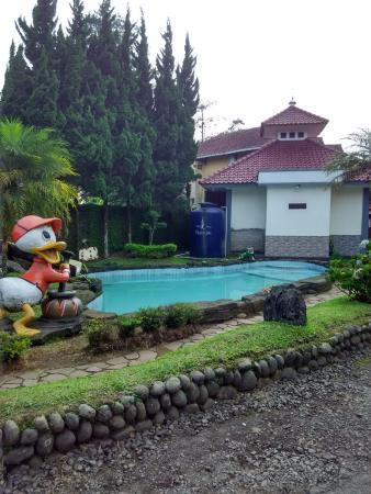Puspa Sari Hotel Ciater: kolam renang