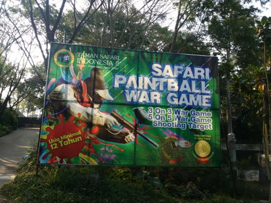 activities picture of taman safari prigen prigen tripadvisor rh tripadvisor com