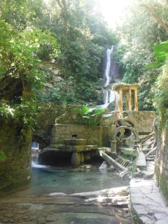 Vistas nicas picture of las pozas de edward james for Jardin surrealista xilitla