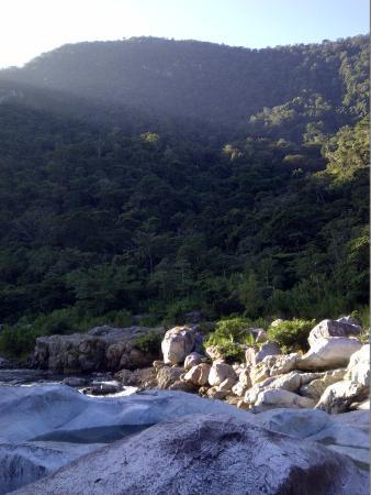 Jungle River Lodge: Vista a unos pasos del hotel