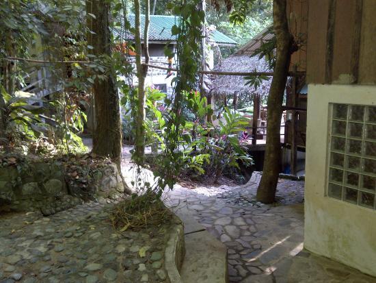 Jungle River Lodge: Pasillo del hotel