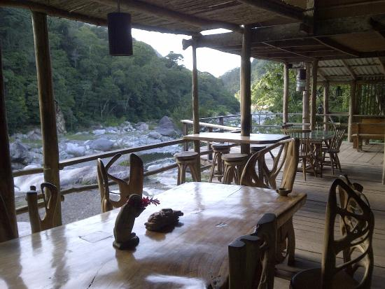 Jungle River Lodge: Comedor