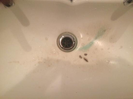 The Godley Hotel: Closeup of sink. Breeding ground for bacteria and mould.